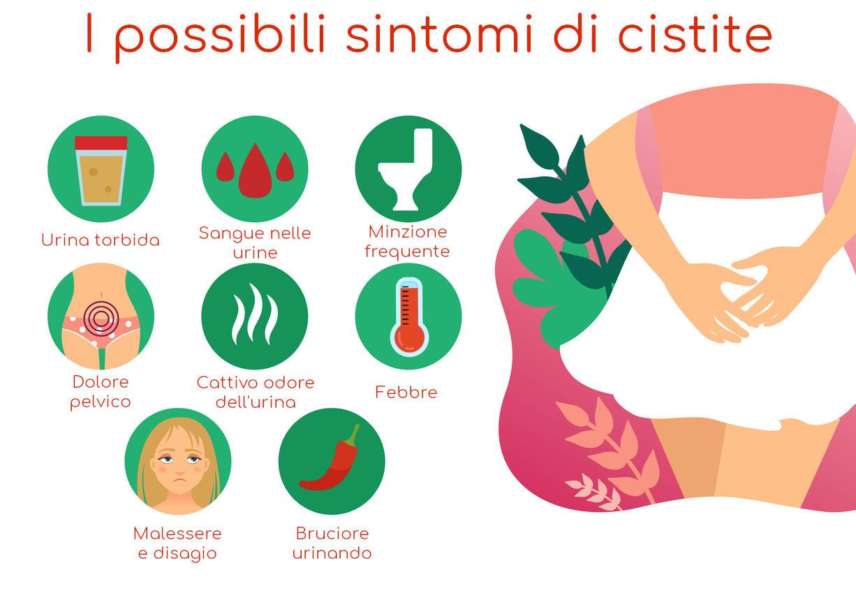 Infografía de los síntomas más comunes de la cistitis.